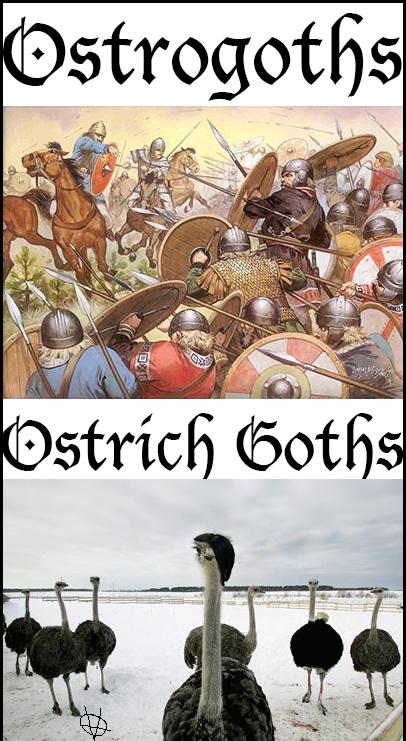 ostrichgoths